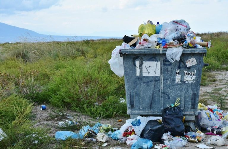 Funkcjonalne kosze na śmieci